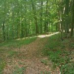 Wanderung in Bayern