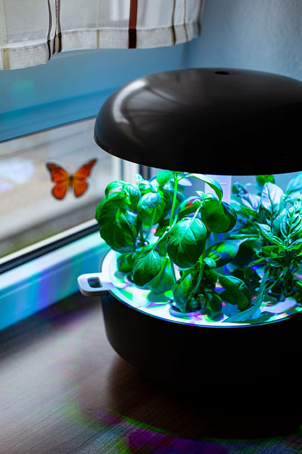Plantui Smart Garden 6 – Hightech Gärtlein für die Küche